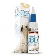 CBD-olja 4 % till hundar