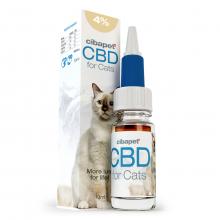CBD-olja 4 % till katter
